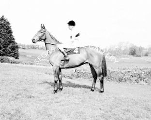 Arkle with Pat Taaffe (b478-02)